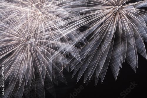 Aluminium Prints Bestsellers Fireworks