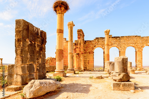 Fotografie, Obraz  Volubilis, an excavated Berber and Roman city in Morocco, ancient capital of the kingdom of Mauretania
