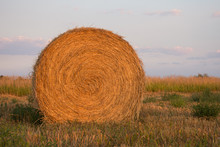 Large Round Hay Bale With Harvested Grass In The Foreground And Uncut Tall Grass In The Background. Light Blue Sky With Clouds Above.