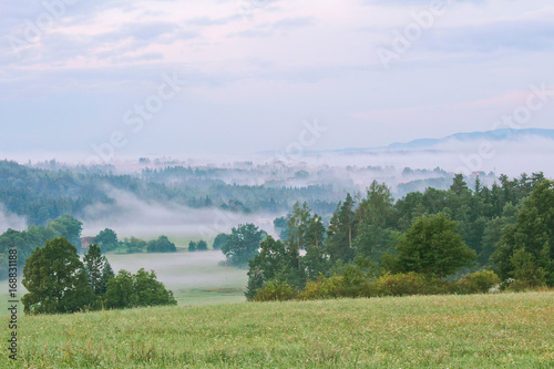 Foto op Canvas Pistache Meadow and trees with hill in morning fog, Czech landscape