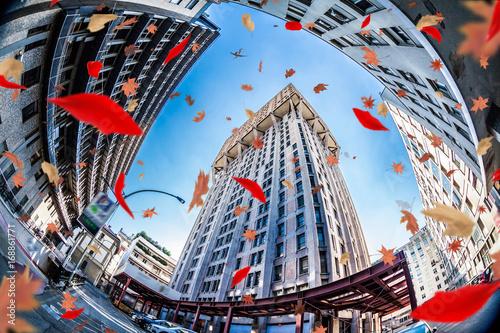 Fotografie, Obraz  Torre Velasca