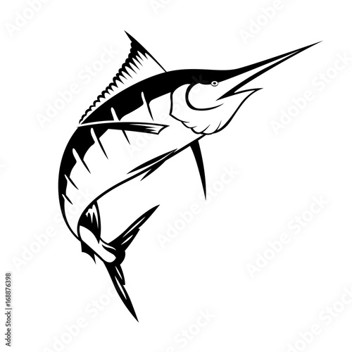 Photo  graphic marlin, vector