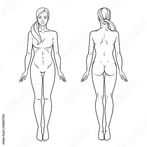graphic relating to Printable Outline of Human Body Front and Back named Lady human body entrance and again check out template. Isolated vector
