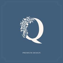 Elegant Letter Q. Graceful Royal Style. Calligraphic Beautiful Logo. Vintage Drawn Emblem For Book Design, Brand Name, Business Card, Restaurant, Boutique, Hotel. Vector Illustration