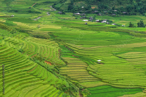 Fotobehang Rijstvelden Rice terrace at Tule, Mu Cang Chai is a rural district of Yen Bai Province, in the Northwest region of Vietnam have been recognized as national landscapes by the Ministry of Culture and Tourism.