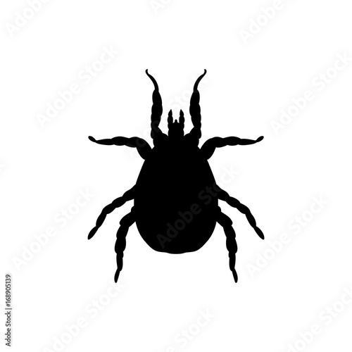 Photo Mite parasite black silhouette animal