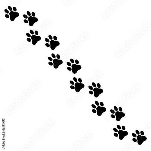 Fotomural  Dog paw print. Paw icon. Stock vector.