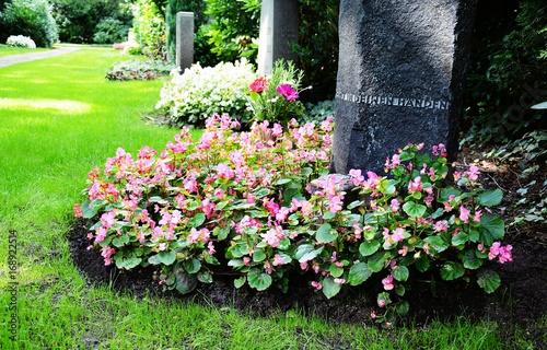 Photo sur Toile Cimetiere Grabstein und Grabbepflanzung (Begonien) im Sommer