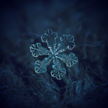 Real Snowflake Macro Photo: La...