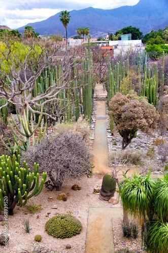 Photo Monastery Garden in Oaxaca