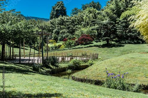 Tuinposter Wijngaard Jardin Japonais.