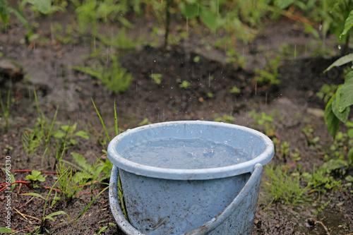 Fotografie, Obraz  雨とバケツ