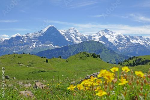 Deurstickers Alpen alpen: eiger, mönch und jungfrau, schweiz