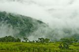 Mgliste góry w porze deszczowej - 169009391