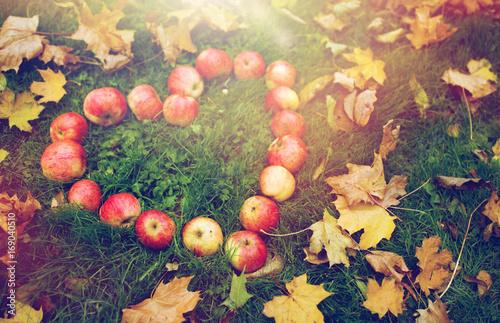 Aluminium Prints Autumn apples in heart shape and autumn leaves on grass