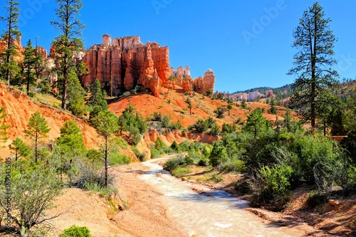 Spoed Foto op Canvas Natuur Park River and hoodoos along Mossy Cave Trail at Bryce Canyon National Park, Utah, USA