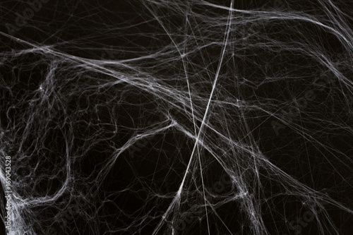 Canvastavla halloween decoration of spider web over black