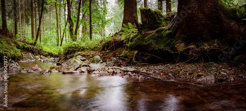 Photo Bach, Wasserlauf im Erzgebirge Wald 1