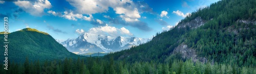 picturesque landscape of pine forest stretching to foot of great snow-covered mountains at sunny day