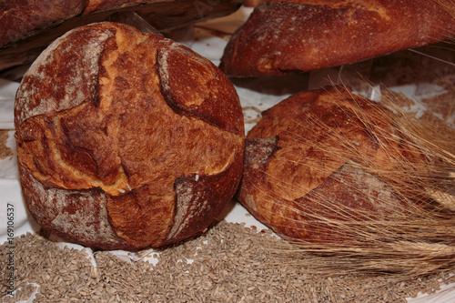 Altamura Italian Fresh Bread Canvas Print