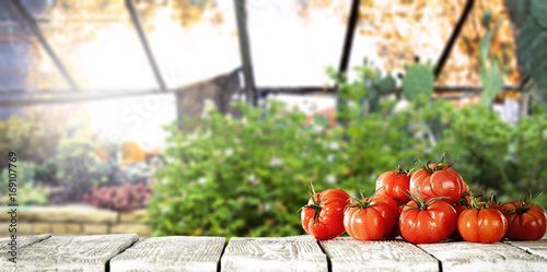 vegetables and table Canvas Print