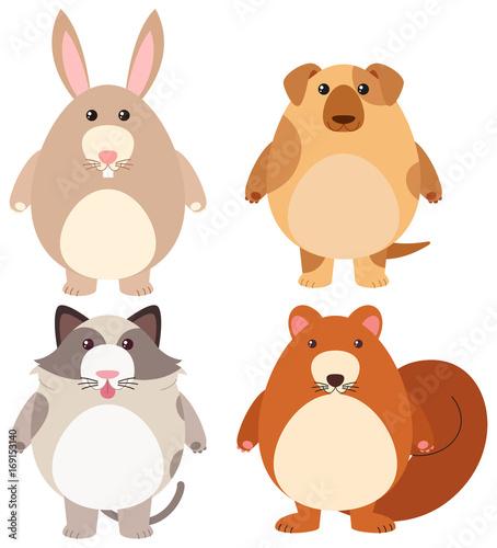 Deurstickers Babykamer Four types of cute pets
