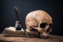 Still Life Photography :  Feather Pen, Inkwell And Human Skull On Old Book Against Art Dark Background