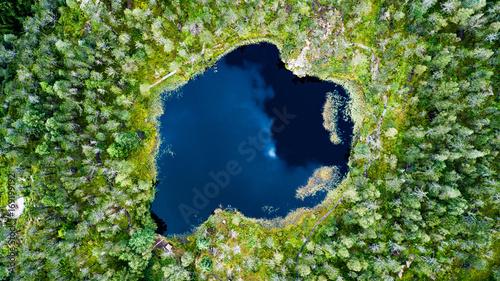 Obraz na płótnie Widok z lotu ptaka lasowy jezioro