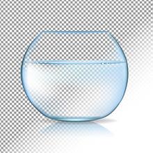 Acvarium Transparent Background