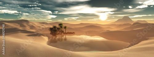 Beautiful oasis in the sandy desert, panorama of the desert landscape, sunset ov Fototapeta