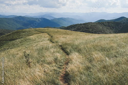 Slika na platnu Appalachian Trail passing through Max Patch, North Carolina