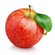 One Ripe Red Apple Fruit With ...