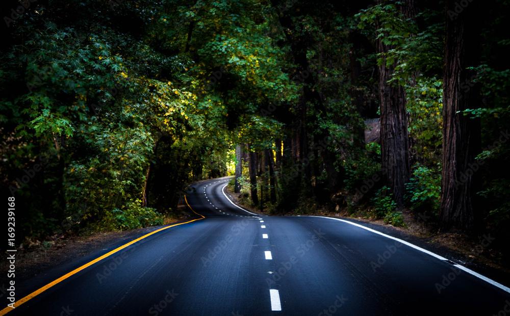 Fototapeta Life Is A Winding Road