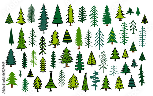 cute abstract conifer evergreen pine fir christmas needle trees collection Fototapet