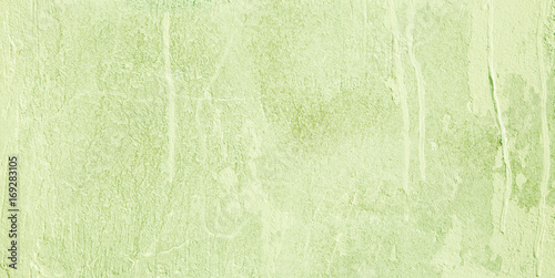 Fotografia, Obraz  Wide screen Decorative Light Green background