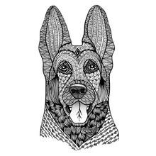 Shepherd Vector Illustration. ...