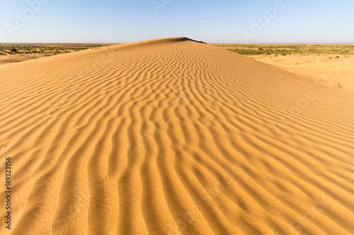 Poster de jardin Desert de sable Lines of sand on dune in desert