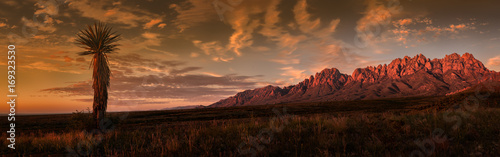 Poster Marron chocolat Organ Mountains Panorama, Sunset