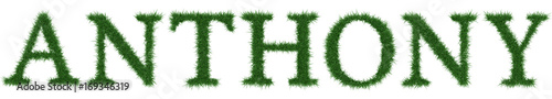 Anthony - 3D rendering fresh Grass letters isolated on whhite background Wallpaper Mural