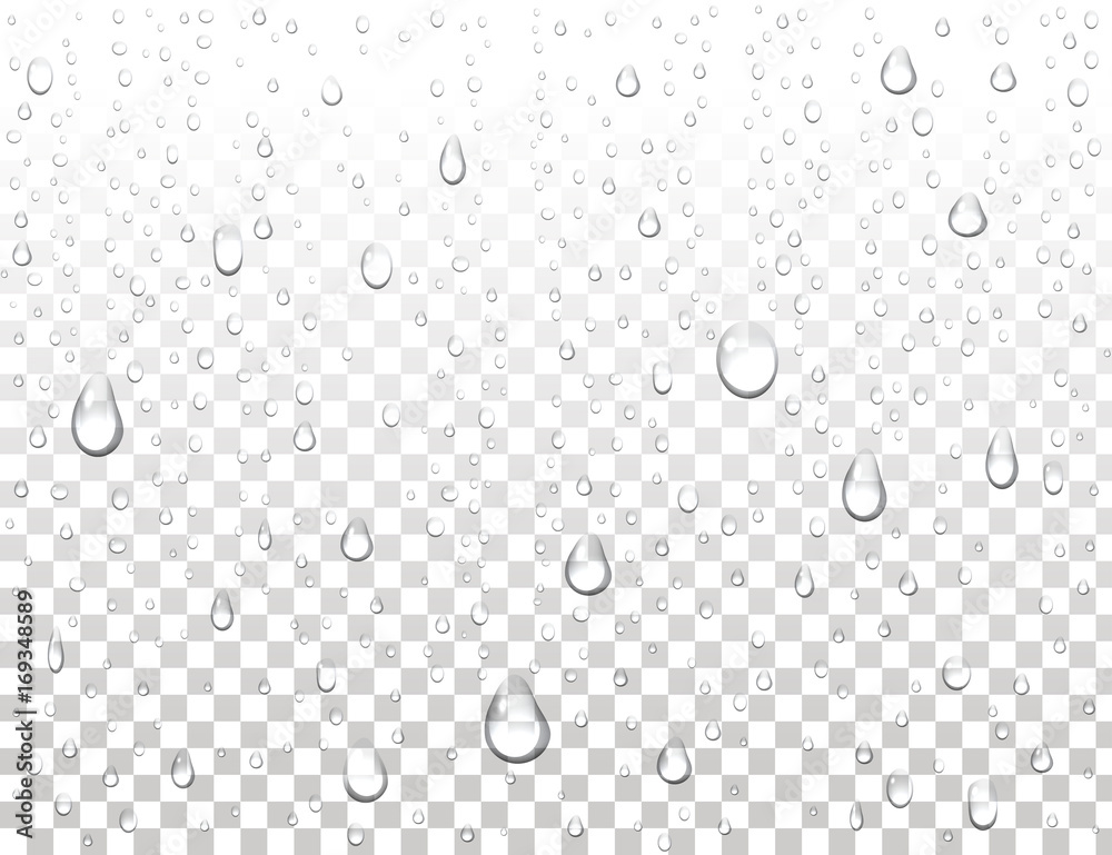 Fototapeta Realistic pure water drops on isolated background. Clean water drop condensation. Steam shower condensation on vertical surface. Vector illustration.