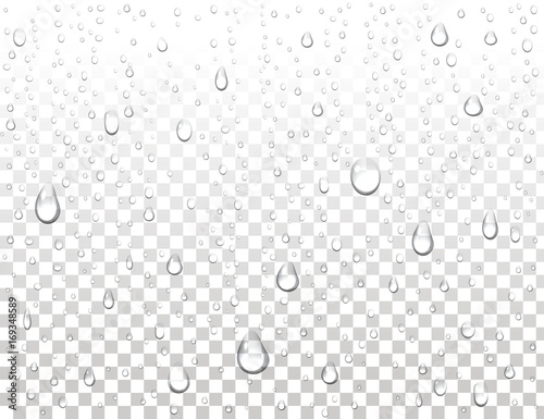 Obraz Realistic pure water drops on isolated background. Clean water drop condensation. Steam shower condensation on vertical surface. Vector illustration. - fototapety do salonu