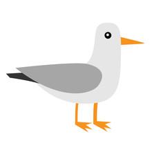 Albatross Icon. Antarctica Pet...