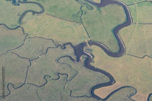 Fotografia, Obraz Marshland Texture