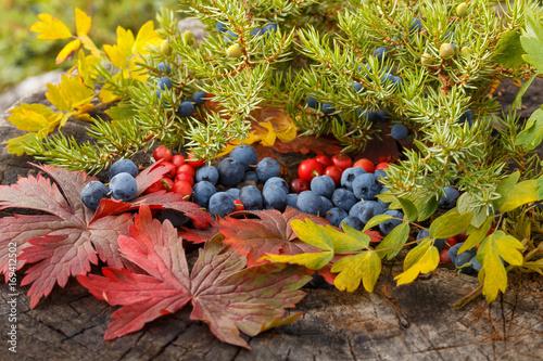 jesienna-aranzacja-stonowana-kolorystyka