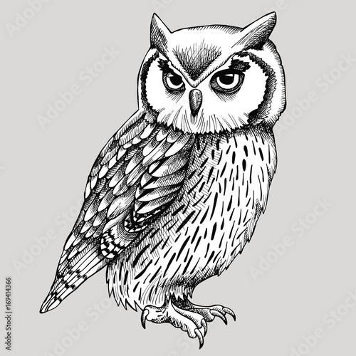Keuken foto achterwand Uilen cartoon Owl Graphic Black & White