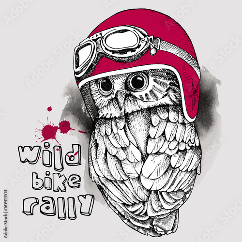 Image of an owl in a retro motorcyclist helmet. Vector illustration.