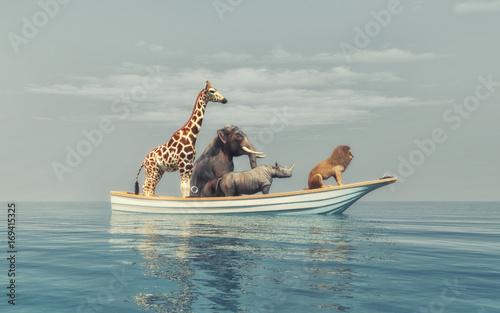 Fotografia  The wild animals