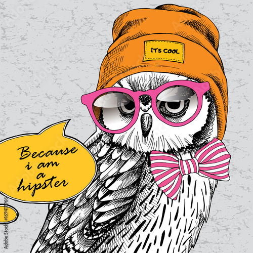 Owl portrait in a Hipster Hat and with glasses. Vector illustration.