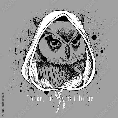 Owl portrait in a hood on gray background. Vector illustration.