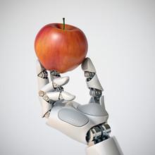 Robotic Hand Holding An Apple ...